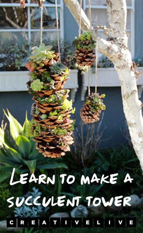 Diy Project   Gorgeous Hanging Succulent Tower