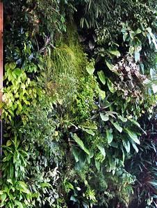 Mur Végétal Anti Bruit : le mur v g tal antibruit marie claire ~ Premium-room.com Idées de Décoration