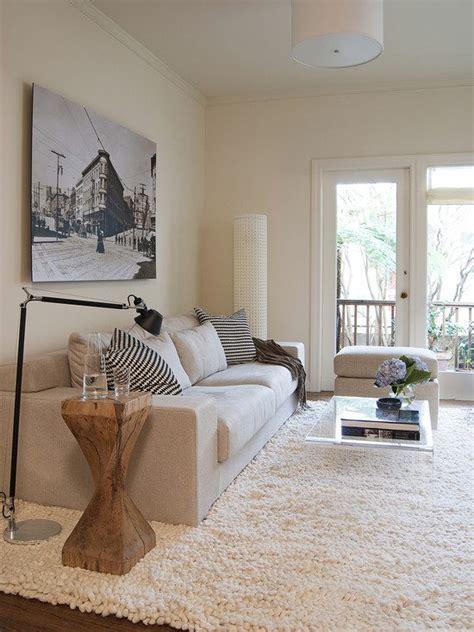 99 intérieurs magnifiques avec tapis shaggy design à poil long