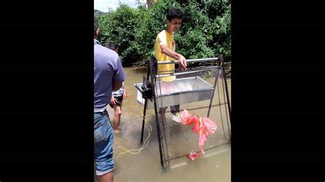 testing  automatic drainage cleaner youtube
