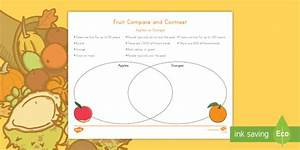 Fruit Compare And Contrast  Apples Vs  Oranges Worksheet    Activity Sheet