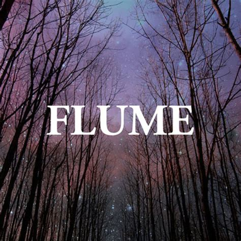 Flume Cover by Flume Possum By Transgressive Transgressive Free