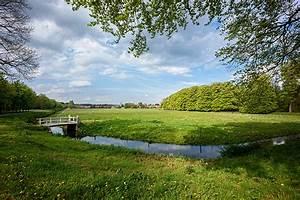 Photos Netherlands Elswout Nature Summer Pond Landscape ...