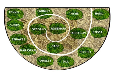 herb garden design plans spiral herb garden plans bee has resulted inthe creation of a new improved herb spiral