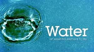 Water  An Essential Element Of Life
