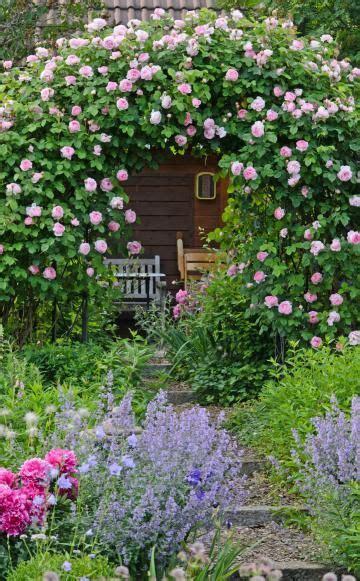 Die Besten 20+ Rosenbeet Ideen Auf Pinterest