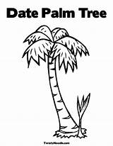 Coloring Tree Palm Chicka Boom Pages Trees Bark Twistynoodle Cartoon Printable Crafts Personalized Template Date Sheet Outline Library Clipart Popular sketch template