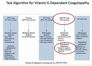Vitamin K Dependant Coagulopathy Diagrams