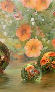 Beautiful Desktop Wallpapers and Backgrounds - WallpaperSafari