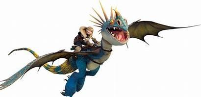 Dragon Train Stormfly Dragons Astrid Chimuelo Httyd