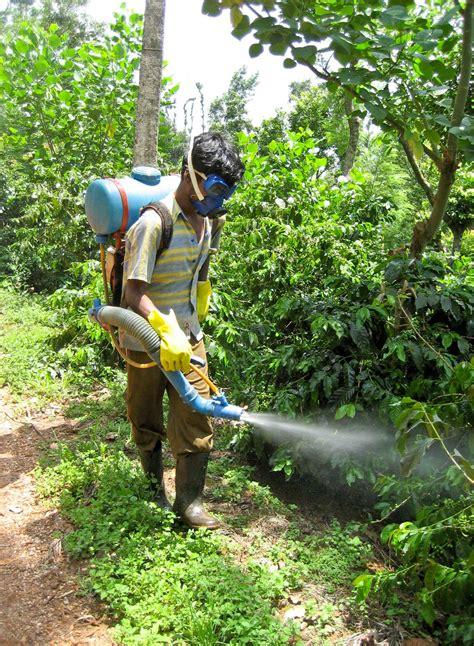 utz coffee farmer wearing protective clothing india utz