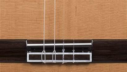 Guitar Classical Strings Bass Side String Bridge