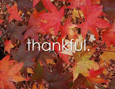 Aesthetic Thanksgiving Wallpaper by Happy Thanksgiving From Aesthetic Everything And Aesthetic