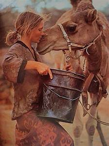 Best 25+ Robyn ... Robyn Davidson Nomad Quotes