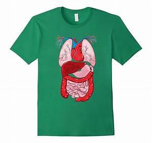 Inside My Human Body Internal Organ Diagram Anatomy T