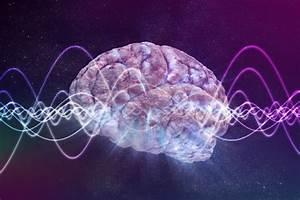 Do Brain Waves Conduct Neural Activity Like A Symphony