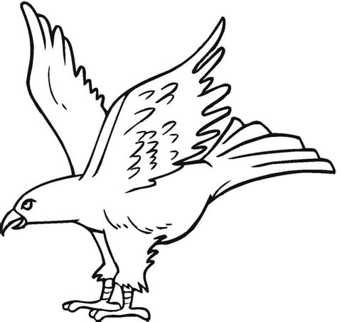 Coloring Eagle by Free Printable Eagle Coloring Pages For