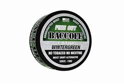Cut Wintergreen Fine Rough Tobacco Dip Fake