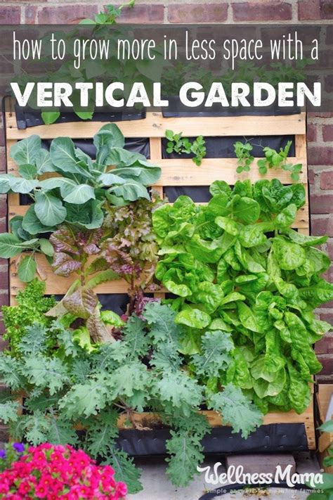What Can You Grow In A Vertical Garden by 17 Best Ideas About Balcony Garden On Small