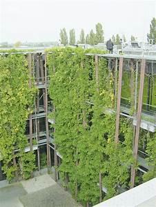 Gewächshaus Bewässerung Mit Regenwasser : k hlen mit regenwasser vorteile durch enev 2014 positive auswirkung auf co2 bilanz energie ~ Eleganceandgraceweddings.com Haus und Dekorationen