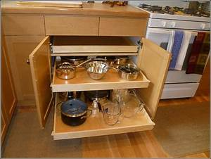 Pull Out Cabinet Shelves Hardware – Cabinets Matttroy