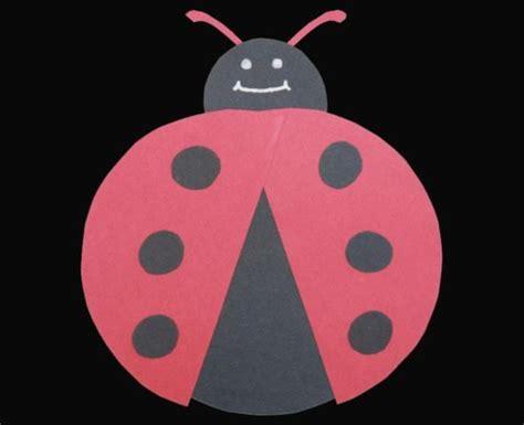 ladybug preschool project school stuff 564   f7e1ce7ed5b010b8595acab6d40fea15