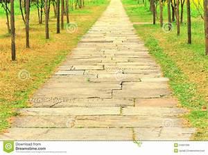 chemin en pierre antique dans le jardin images libres de With chemin de jardin en pierre