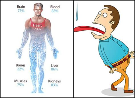 Heres What Happens To Your Body When Youre Dehydrated