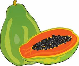 Papaya Clipart - ClipArt Best