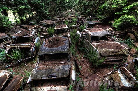 This Traffic Jam Was Stuck In Belgium Forest For Over 70 Years