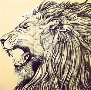Lion head | Inspiration | Pinterest | The lion, Leo the ...