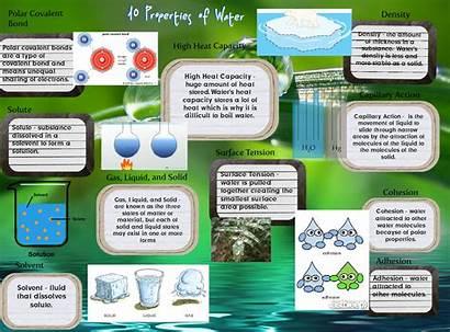 Properties Water Source Chemistry Glogster Edu Science