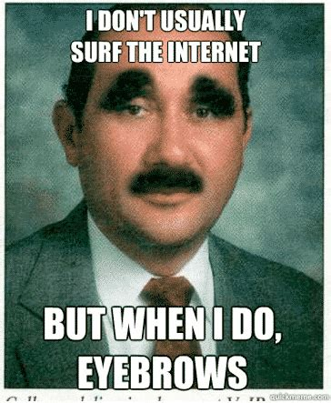 Bushy Eyebrows Meme - funniest memes this blog rules why go elsewhere