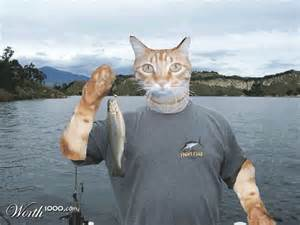 cat fishing what is cat fishing girlsaskguys