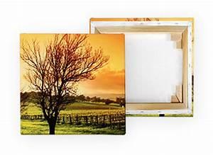 Dreiteilige Bilder Auf Leinwand : fotos auf leinwand drucken leicht gemacht pixelnet ~ Orissabook.com Haus und Dekorationen