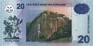Surinamese Dollar Srd Definition