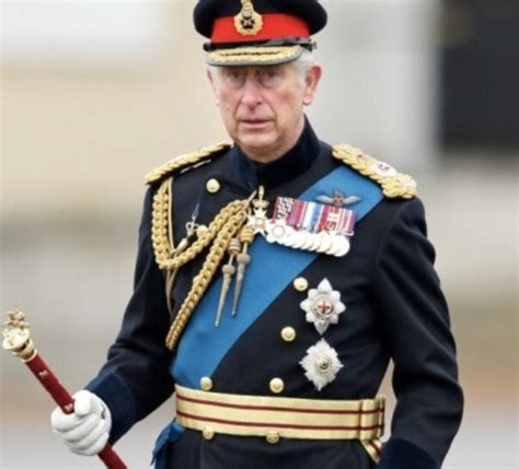 Are the medals and ribbons that Prince Charles wears on ...
