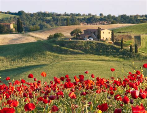 5 Reasons To Visit Tuscany In June  Visit Tuscany