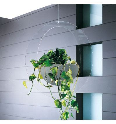Fioriere Da Interno Design Fioriera Da Interno Design In Plexiglass Erbavoglio