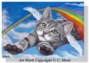 Cats Rainbow Bridges Angel