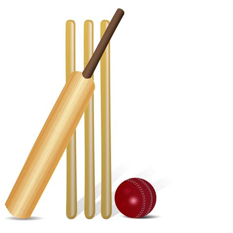 Cricket Images Clipart Cricket