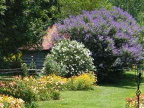 stunning garden landscape design ideas with small ornamental trees on green grass fields also