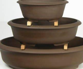 vendita vasi per bonsai vasi bonsai