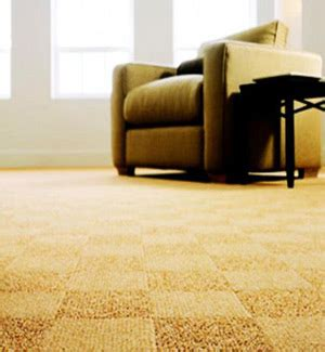 Rug Cleaning Raleigh by Best Carpet Cleaning In Raleigh Nc Carpet Cleaning