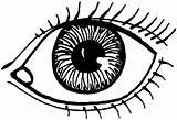 Coloring Eye Eyes Drawing Printable Human Cartoon Sheet Lovely Draw Pupil Eyeball Daniel End Outline Sun Drawings Getdrawings Left Easy sketch template