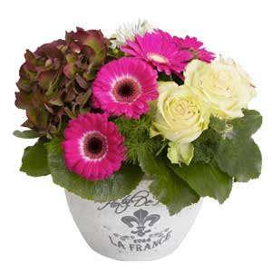 cesti di fiori faxiflora 174 regala cesti di fiori e composizioni