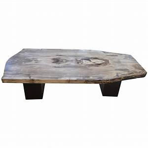 petrified wood coffee table for sale at 1stdibs With petrified wood coffee table for sale