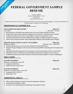 examples of resumes professional federal resume format With how to make a resume for a government job