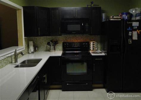 dark birch sable kitchen contemporary kitchen