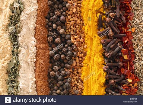 Curry Spices Gingermethi Fenugreek Leavesgarlic Stock